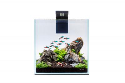 Аквариумный набор Nano Set 10 литров для мелких видов рыб, креветок и др.